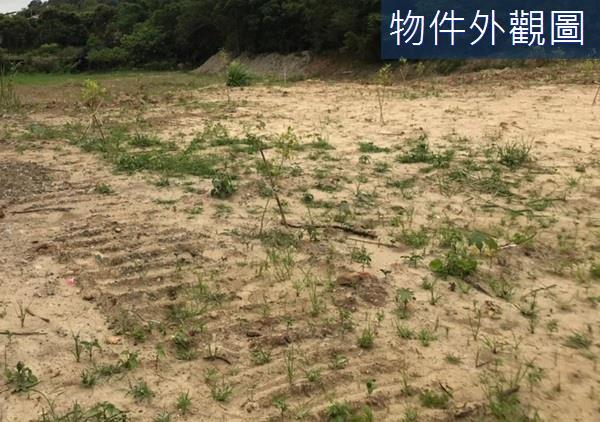 寶山寶新路邊~百米大面寬農牧用地- 0180872