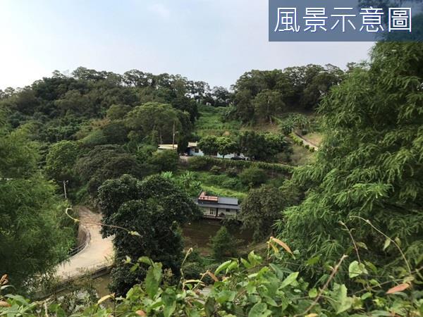 專任~寶山稀有社區型湖景農牧地(一)- 0142891